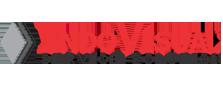 Indovisualservice.com Logo